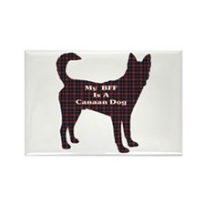 BFF Canaan Dog Rectangle Magnet (100 pack)