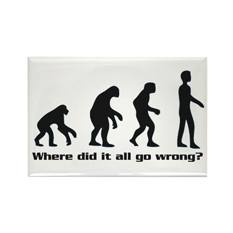Evolution - Where did it all go wrong? Rectangle M