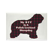 Polish Lowland Sheepdog Gifts Rectangle Magnet (10
