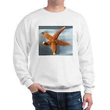 Sugar Sea Star Sweatshirt