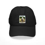 BEAUTIFUL HORSES Black Cap