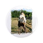 BEAUTIFUL HORSES 3.5