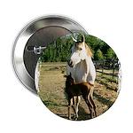 BEAUTIFUL HORSES 2.25