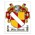 Fitz-Nicoll Family Crest Small Poster