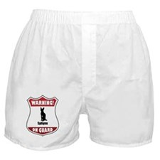 Sphynx On Guard Boxer Shorts