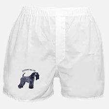 Cute Kerry blue terrier Boxer Shorts