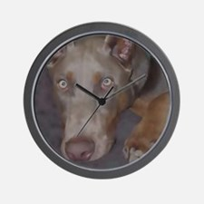 Cute Pinscher Wall Clock