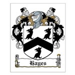 Hayes Family Crest Small Poster