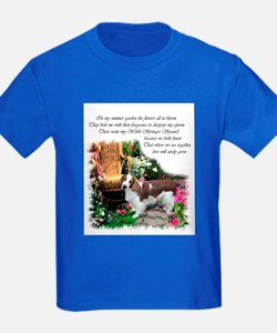 Welsh Springer Spaniel T