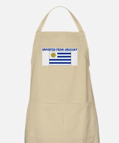 IMPORTED FROM URUGUAY BBQ Apron