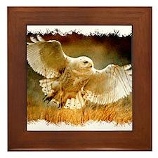 Funny Talon Framed Tile