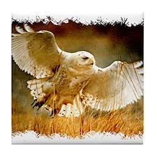 Funny Owl animals Tile Coaster