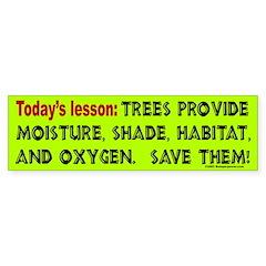 Today's Lesson Bumper Bumper Sticker