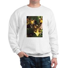 Potted Orchids Sweatshirt