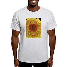 Yellow Shasta Daisy T-Shirt