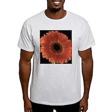 Orange Shasta Daisy T-Shirt