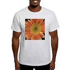 Orange Shasta Daisy II T-Shirt