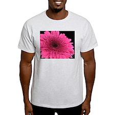 Hot Pink Shasta Daisy T-Shirt