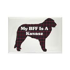 BFF Kuvasz Rectangle Magnet (10 pack)