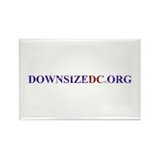 Downsizer Rectangle Magnet (10 pack)