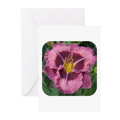 Macbeth Daylily Greeting Cards (Pk of 10)