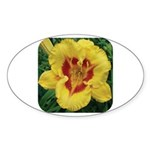 Fooled Me Daylily Oval Sticker