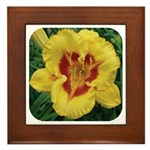 Fooled Me Daylily Framed Tile
