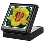 Fooled Me Daylily Keepsake Box