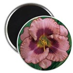 Daring Deception Daylily Magnet
