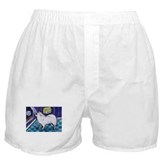 American Eskimo Dog cs moon Boxer Shorts