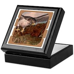 Flight of the Gyr Falcon Keepsake Box