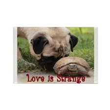 Love is Strange Rectangle Magnet