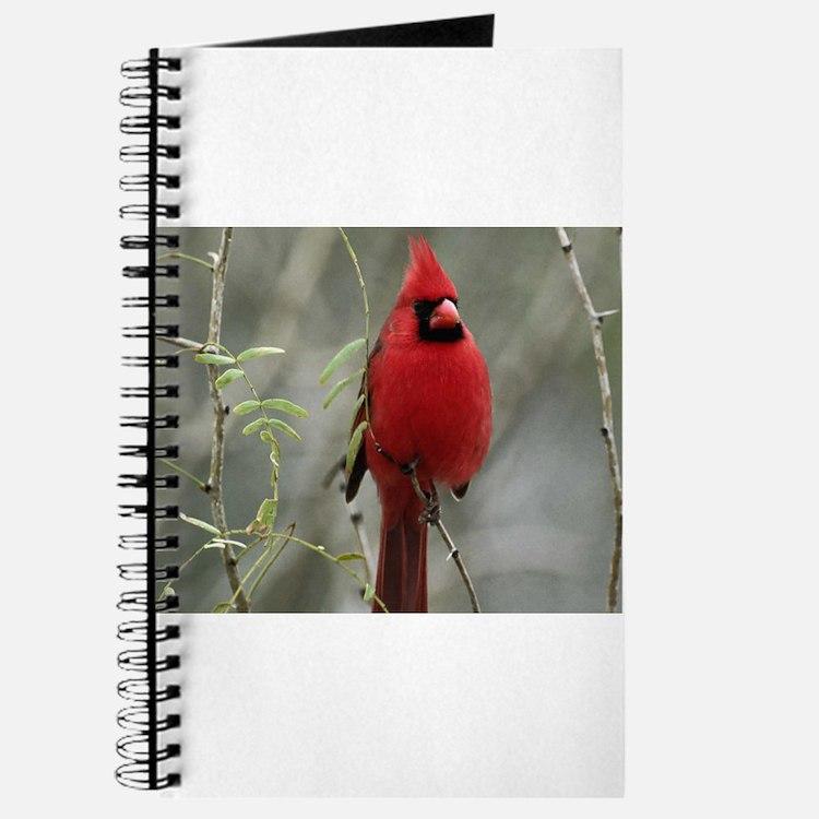 Cute Cardinal Journal