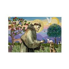St Francis & Border T Rectangle Magnet (10 pack)