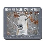 Teddy Horse-Mouse Pad