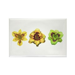 Yellow Daylilies Rectangle Magnet