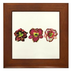 Red Daylilies Framed Tile