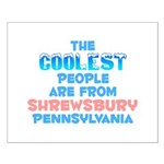 Coolest: Shrewsbury, PA Small Poster