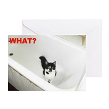 What Greeting Cards (Pk of 10)