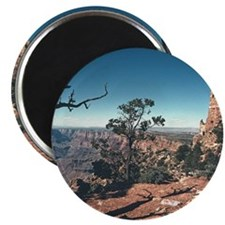 Grand Canyon Tower Magnet