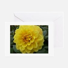 Yellow Dahlia Greeting Cards