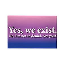 Not In Denial Rectangle Magnet (10 pack)