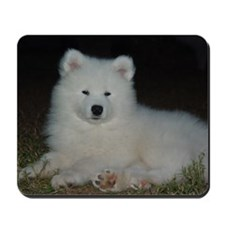 Samoyed Puppy Mousepad