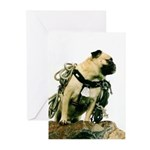 Vinny the Pug Greeting Cards (Pk of 20)