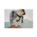 Vinny the Pug Rectangle Magnet (100 pack)