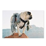 Vinny the Pug Postcards (Package of 8)
