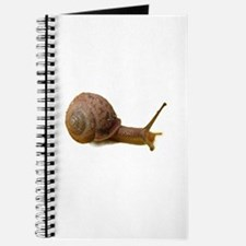 Snail Journal