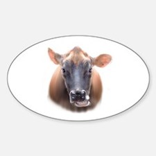 Cow face Oval Decal