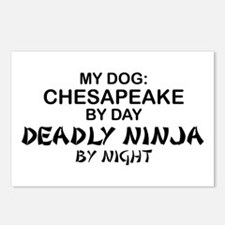 Chesapeake Deadly Ninja Postcards (Package of 8)
