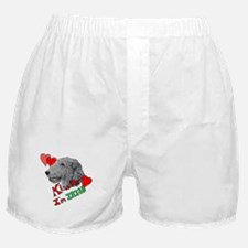 Irish Wolfhound Kiss me Boxer Shorts